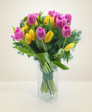 Tulipani online
