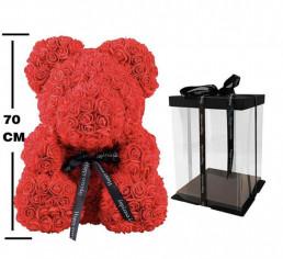 Teddy rose XXL online