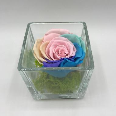 Rosa stabilizzata in cubo di vetro